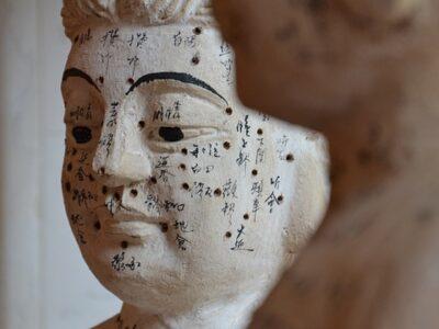 Traditionelle Chinesische Medizin (TCM) in der HNO Medizin:
