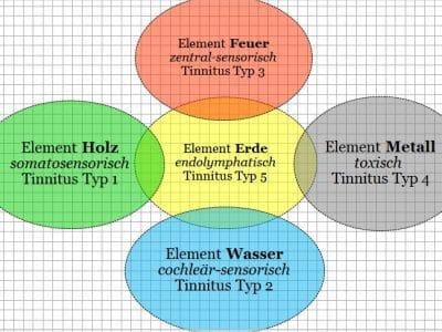 Tinnitus  –  multikausales Symptom und dessen Einordnung in die 5-Elemente-Lehre der traditionellen chinesischen Medizin (TCM)